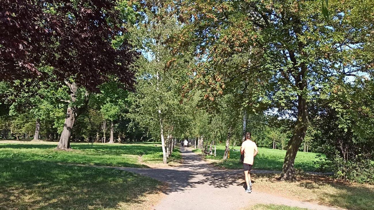 Park Skowroni Wrocław Krzyki ul.Spiska