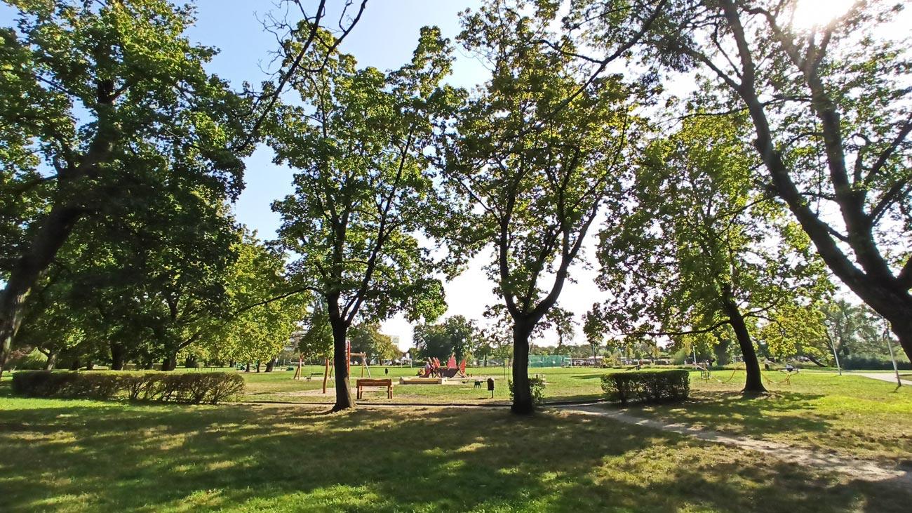 Park Skowroni Wrocław Krzyki ok 25 ha zieleni